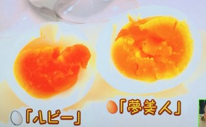 2種類のゆで卵