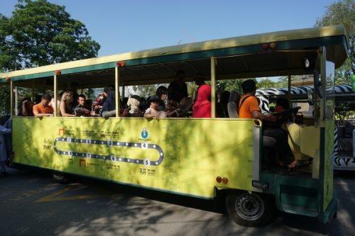 園内のループバス