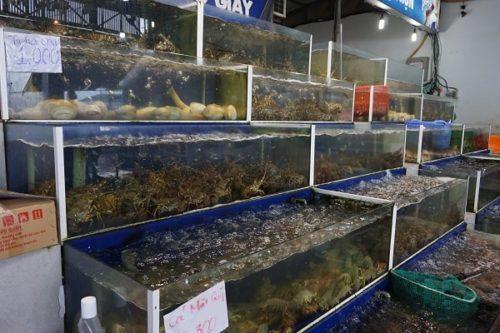 べーマンに並ぶ魚介類